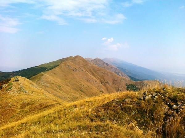 Беласица Болгарии