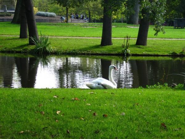 парк в болгарии