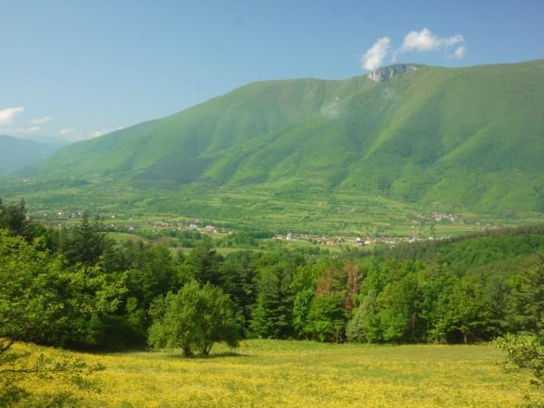 зеленая гора в Болгарии